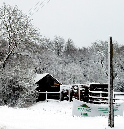 DSC7132 
