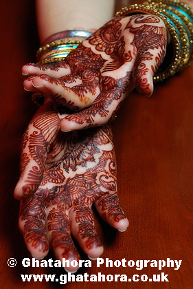 IMG6886 