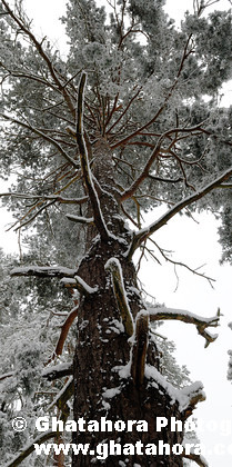 DSC7166 