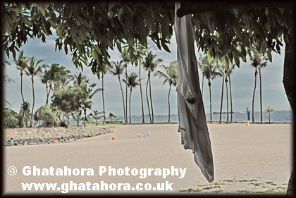 DSC0028 
