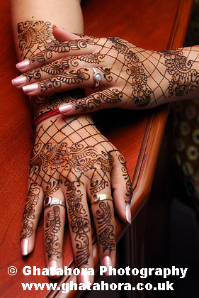 IMG7108 