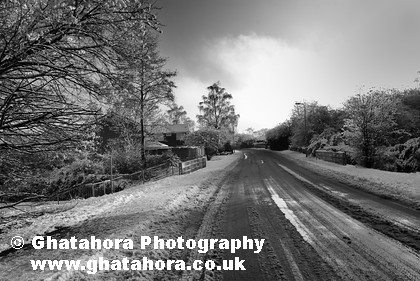 LIN5419 