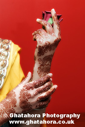 IMG6971 