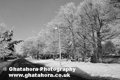 LIN5430 