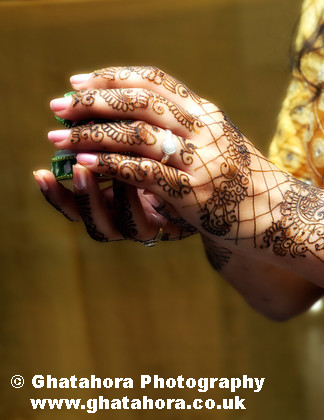 IMG7138 