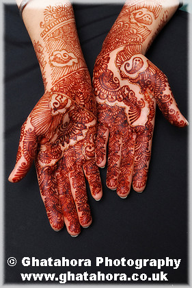 IMG7244 