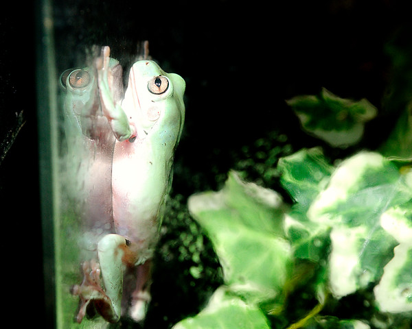 IMG8469 