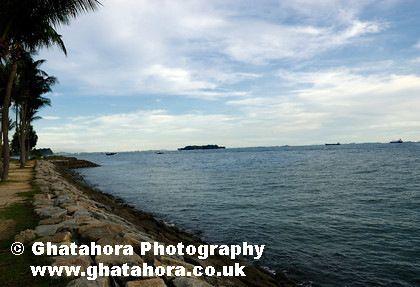 DSC0041 